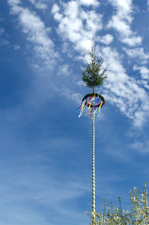 A colorful german maypole in front of blue sky in springtime Stock Photo