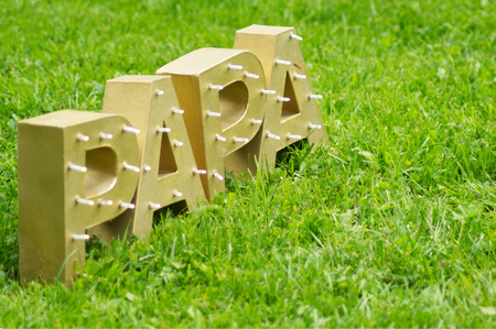 The word PAPA spelt out with large golden block letters. Shot horizontally against a green meadow..