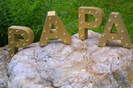 The word PAPA spelt out with large golden block letters. Shot horizontally against a green meadow and a big stone..
