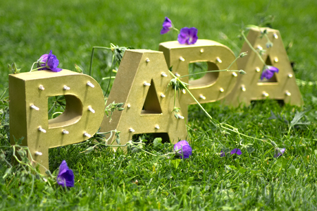 The word PAPA spelt out with large golden block letters. Shot horizontally against a green meadow with purple flowers. Reklamní fotografie