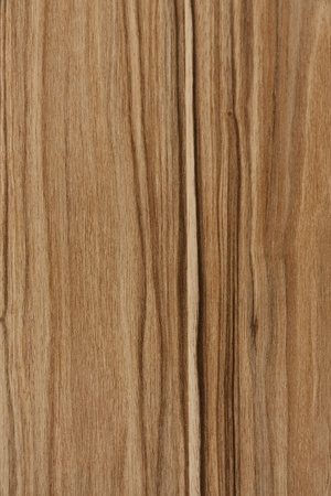 Wooden background with detailled texture. Sharp image.