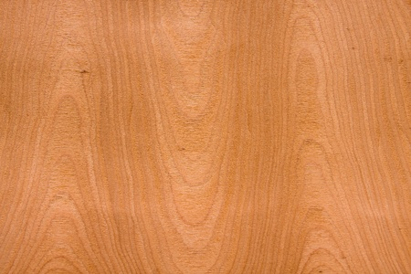 Detailled wooden texture background.  Stock Photo