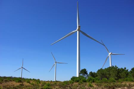 eolic: Wind turbines on a wind field, Sagres, Portugal.