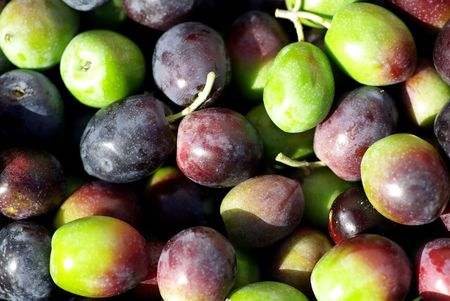 Texture of the green and red olives. Stock Photo - 2154219