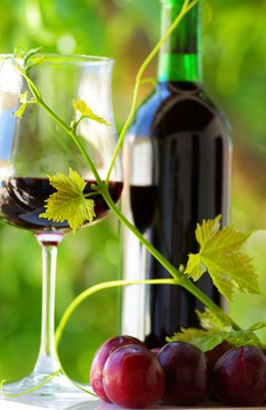 Glass and bottle of red wine with green leaf. Stock Photo