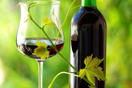 Glass and bottle of red wine with green leaf. photo