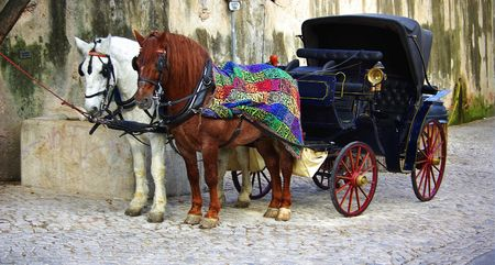 sintra: Two horses in Sintra, Portugal. Stock Photo