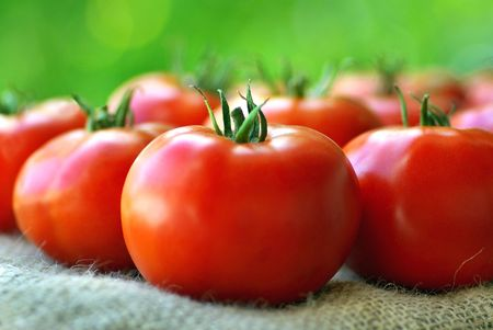 Red tomatoes. Stock Photo