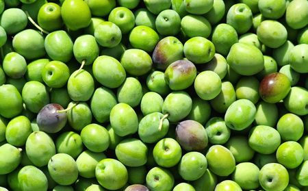 Closeup of green olives. Stock Photo - 5788893