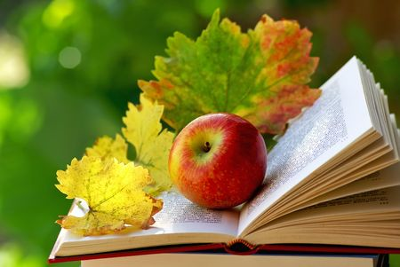 Apple and leaves on book. Stok Fotoğraf - 7329297