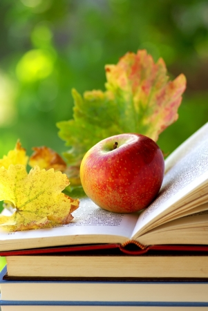 Apple and leaves on book.