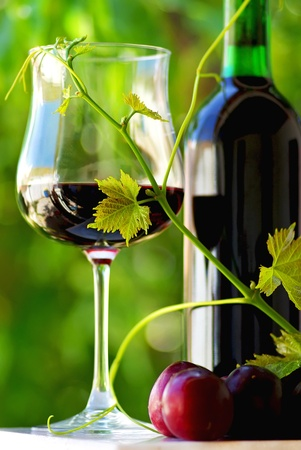 Red wine and fruits. photo