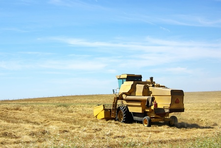 Combine harvester working a wheat field at Portugal. photo