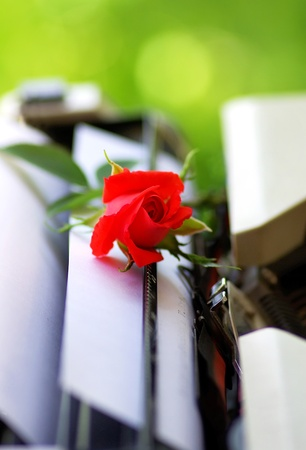 Red rose in old Typing machine Stock Photo - 9870670