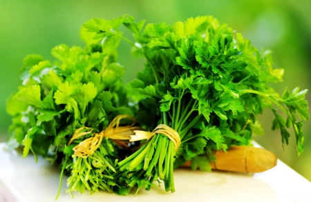aromatic, background, brightly, bunch, bundle, cilantro, close, color, cook, cooking, coriander, cuisine, culinary, curly, diet, eating, foliage, food, fragrant, fresh, freshness, garnish, green, health, healthy, herb, herbal, horticulture, ingredient, is Stok Fotoğraf - 11536367
