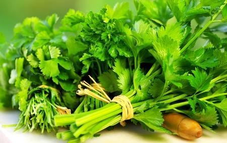 herbal  ingredients of cuisine