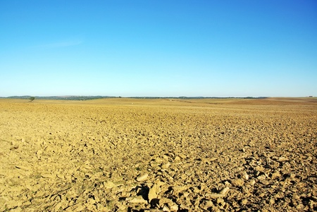 plowed: Plowed field at Portugal