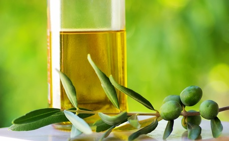 Olives on branch  and oliveoil.  Standard-Bild