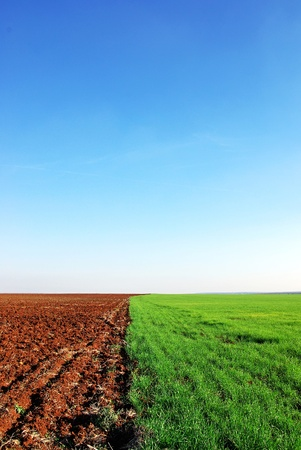 plowed and green field background photo
