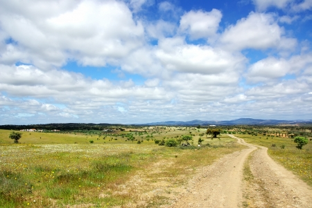 space weather tire: Landscape of alentejo field and road. Editorial