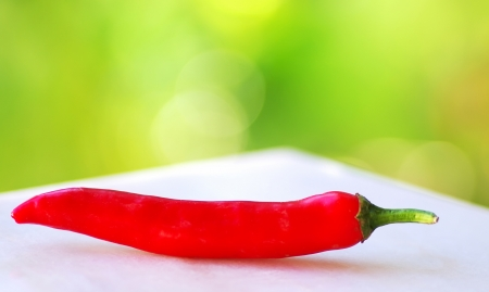 red hot chili pepper isolated on a green background  photo