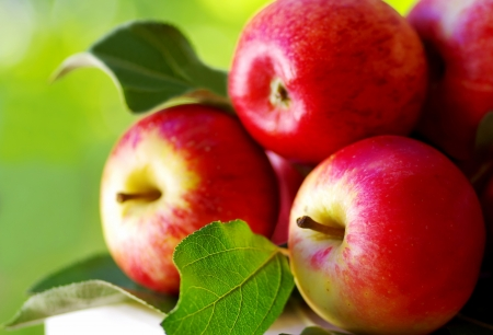 ripe red apples on table, green background Stok Fotoğraf - 15283146