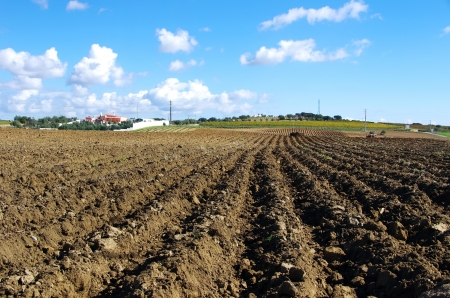 furrow: Landscape of plowed field at Portugal