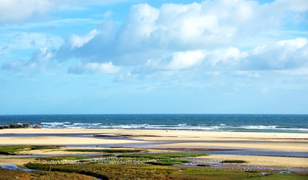 Landscape of Ria Formosa, Algarve photo