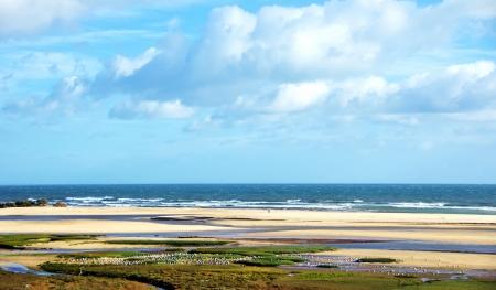 Landscape of Ria Formosa, Algarve