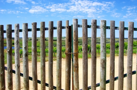 Closed gate in entrance of  farm photo
