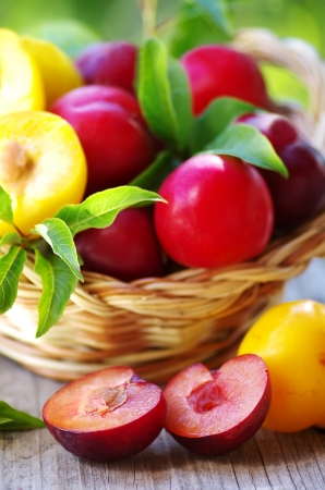 yellows: plums in basket and cut plum on table