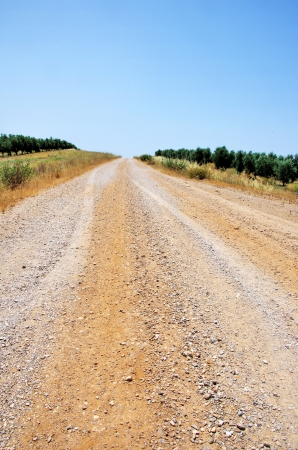 space weather tire: road at Alentejo, south of Portugal