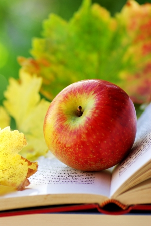 Apple and leaves on book.  photo