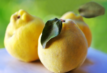 comestible:  close-up of quince fruits Stock Photo