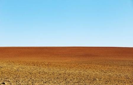 ploughed field:  plowed soil of agricultural field