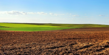 ploughed field: ploughed field under  cloudy sky, at sunset