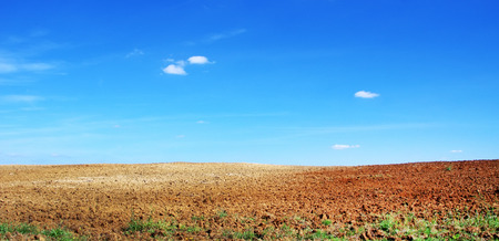 arable land  and blue sky photo
