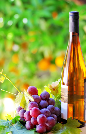 winetasting: Grapes and wine bottle