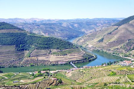 casal: Landscape of  Douro vineyards, Pinhão, Portugal Stock Photo
