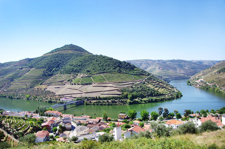 casal: Landscape of  Douro vineyards, Pinhao, Portugal