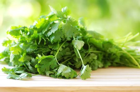 cilantro: manojo de cilantro en la mesa