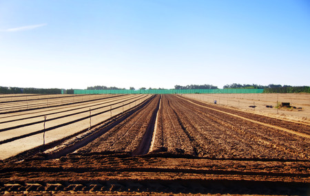 arable land: arable land with furrows