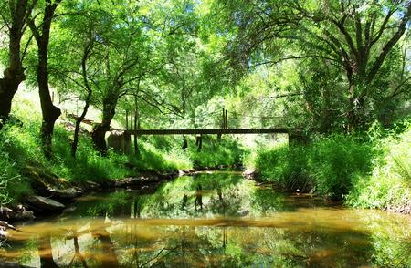 sluice: Landscape of lucefecit river Portugal Stock Photo