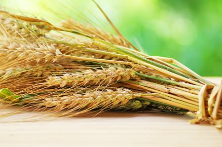 cebada: espigas de trigo sobre la mesa Foto de archivo