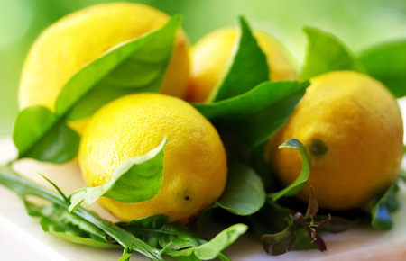 ripe: ripe lemons with leaves in table