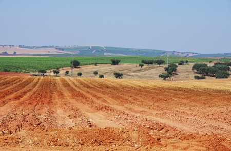 ploughing: Plowed field in the alentejo region, Portugal Stock Photo