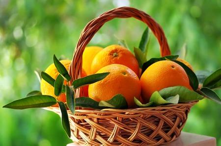 corbeille de fruits: oranges mûres dans le panier sur fond vert Banque d'images