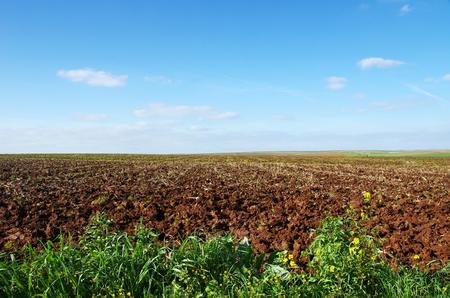 the arable land: mediterranean rural field to cloudy horizon Stock Photo