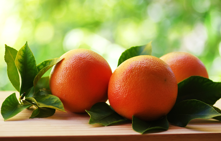 Ripe orange isolated on green background