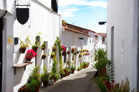 old street with flowers, Moura (Portugal)